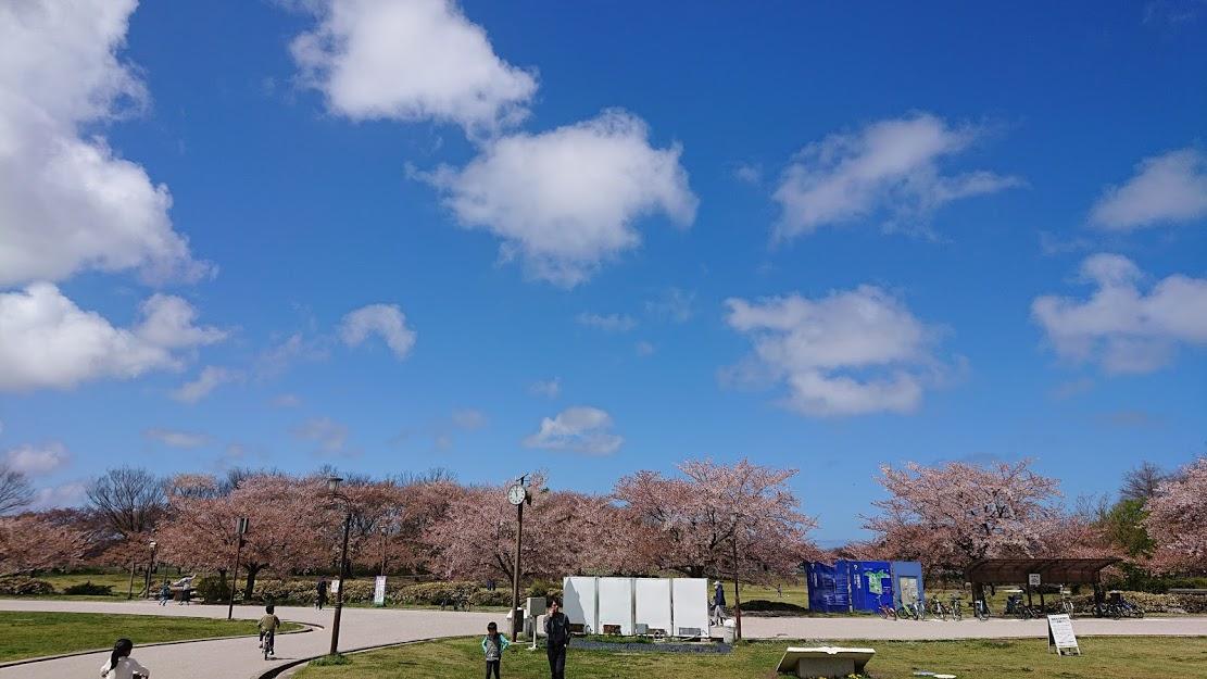 新潟のおすすめスポット♪お散歩コース編【新潟スポーツ公園】