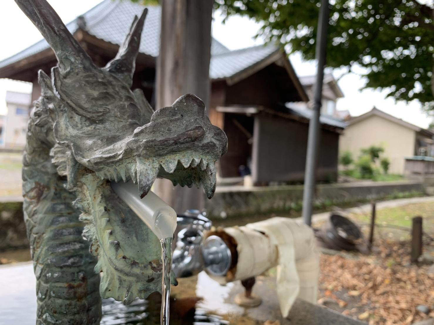 新潟で一番歴史のある市…⁈胎内市の三八市に行ってみた!